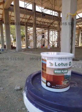 Báo giá sơn giả gỗ Lotus chất lượng cao